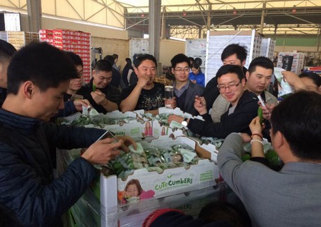 China imports first air shipment of Canadian hothouse cucumbers