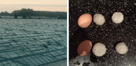 Europe: Hail, thunderstorms destroy greenhouses